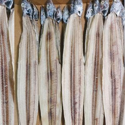 [푸드큐브] 목포 반건조 건조 생선 말린 갈치 건갈치 풀치