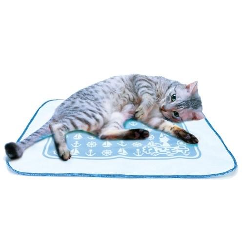 마다다비 장난감 네코모테 고양이집 타키 시트 블루