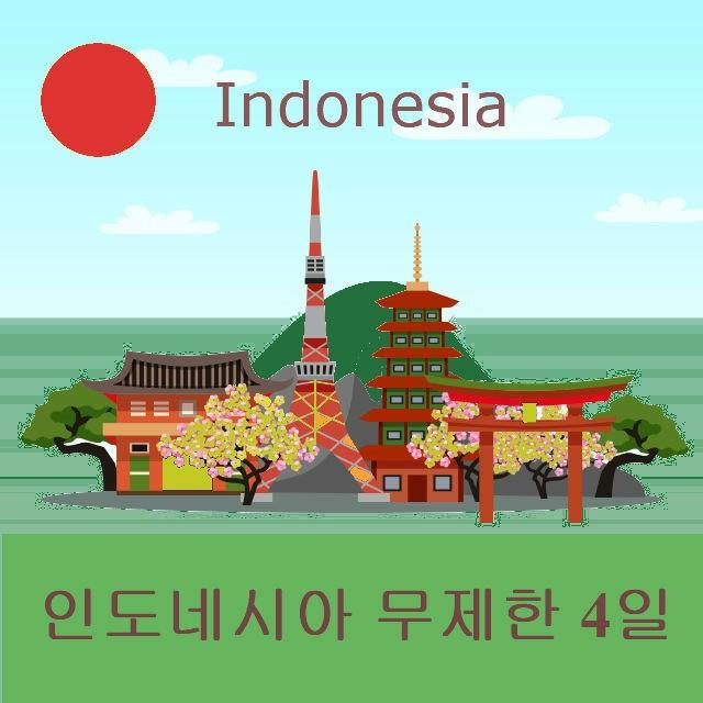 인도네시아 유심 LTE 무제한 4일/택배/인천공항/김포공항/김해공항 수령가능